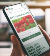 Gift Card Balance