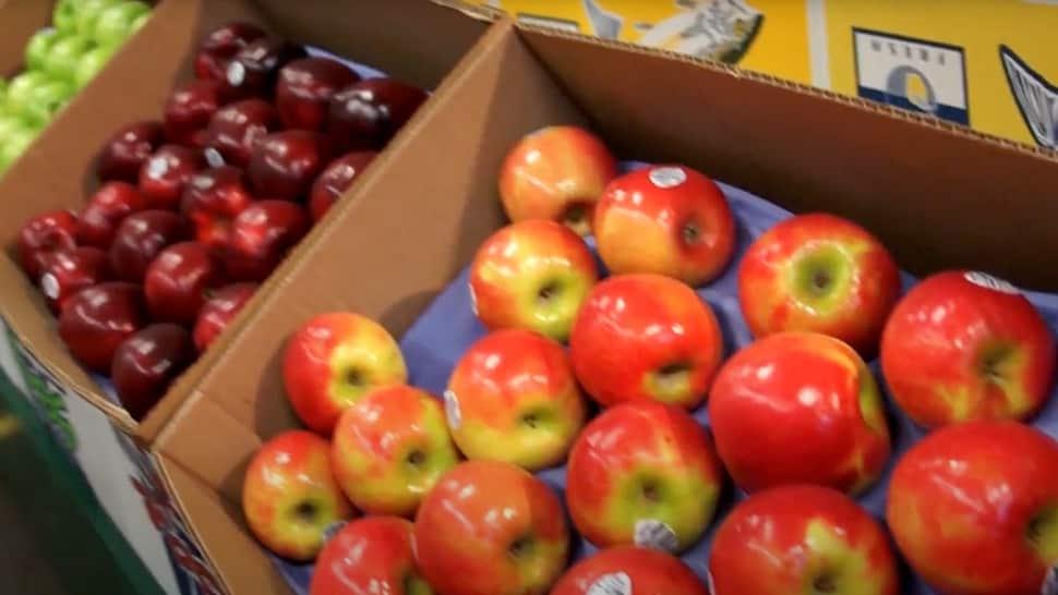 Produce-Terminal-Thumbnail